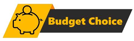 Editor's badge - budget choice