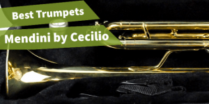 picture of Mendini by Cecilio trumpet