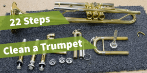 featured image of the article how to clean a trumpet