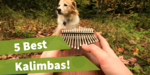 featured image, two hands holding Kalimba Mbira, mbira vs kalimba, best thumb piano, ,