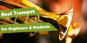 picture of trumpet bell and a text that reads: best trumpet for beginners & students