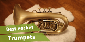 header image of the article best pocket trumpet reviews